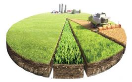 Форма аренды земли сельскохозяйственного назначения